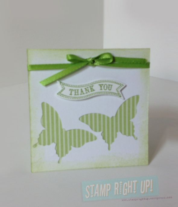 3x3 Note Card Gift - Elegant Butterfly Punch & Wild Wasabi DSP
