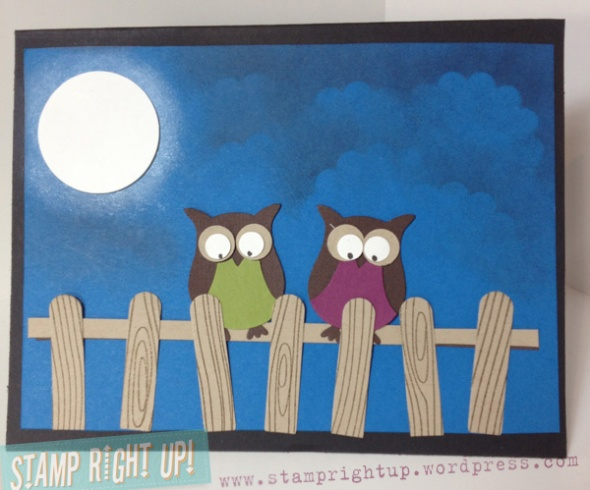 Stampin Up Owl Punch Card:  Night Owls