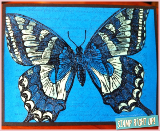 Bleached Swallowtail on Pacific Point with En Francais background stamp