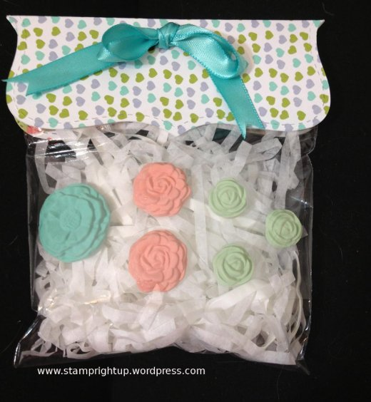 Treat Goodie Bag Party Favors Stampin Up
