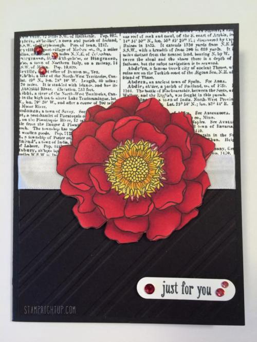 Cherry Cobbler Blendabilities Blended Bloom by Wendie Bee of Stamp Right Up Canadian Stampin Up Demonstrator