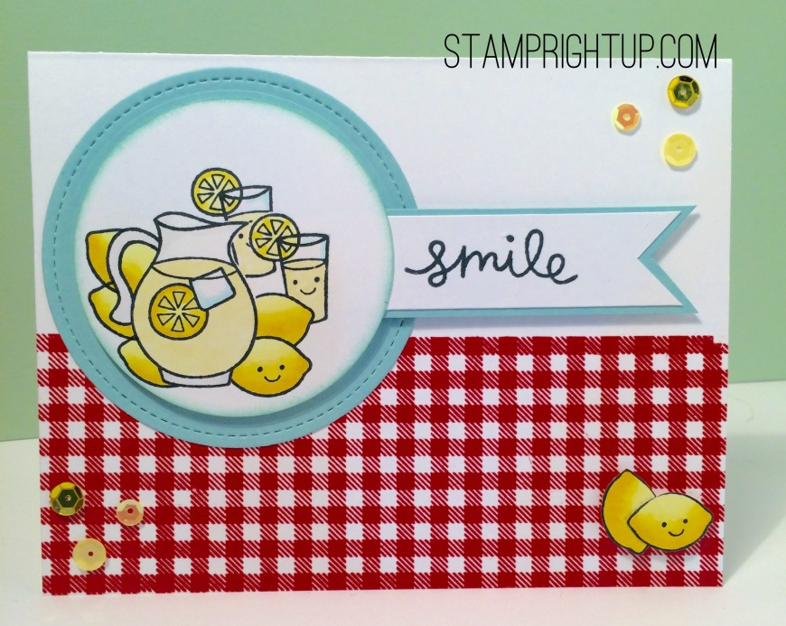 Lawn Fawn Make Lemonade Gingham Wendie Bee Stamp Right Up